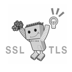 2017 het jaar van SSL en Javascript